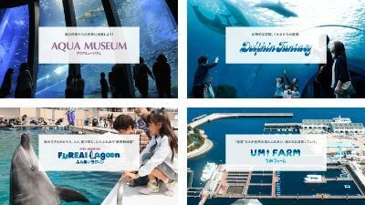 横浜八景島シーパラダイス・4つの水族館「アクアリゾーツ」