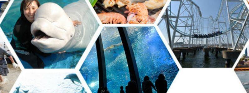 横浜八景島シーパラダイス・水族館も遊園地も楽しめるチケット