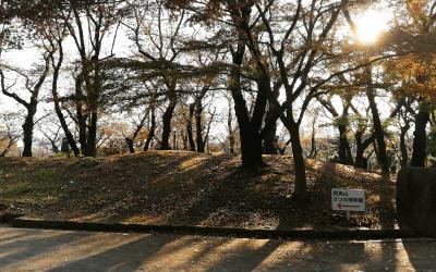 北区王子・飛鳥山公園