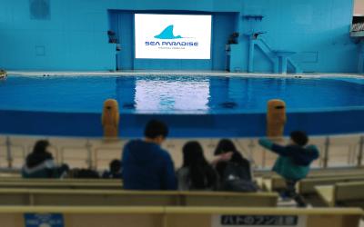 横浜八景島シーパラダイス・アクアスタジアム(イルカショー開演1時間前の様子)
