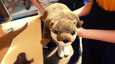 サンシャイン水族館「カワウソWEEK+」かわうそぬいぐるみ