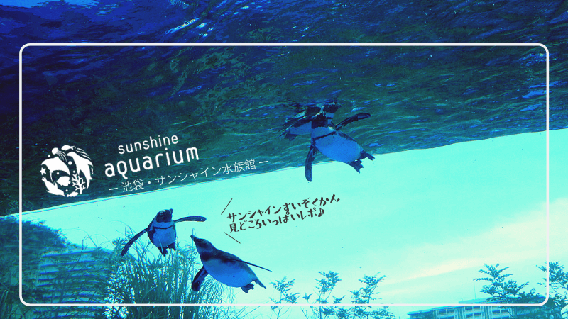 """サンシャイン水族館・""""空飛ぶペンギン""""""""ゾウギンザメ""""……見どころ満載レポ!"""