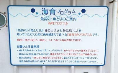 うみファーム・海育プログラム