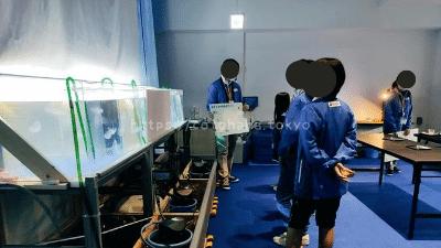 キッザニア東京「水族館飼育員(クラゲのお世話)」