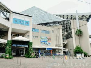 【横浜・八景島シーパラダイス】アクアミュージアム1F「チケットカウンター」